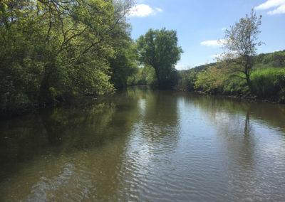 nature-balade-bateau-la-gacilly
